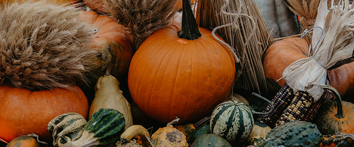 header_display-of-autumn-colors-with-pumpkins-and-corn